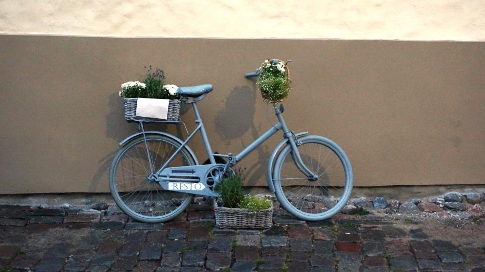 tallin rower.JPG